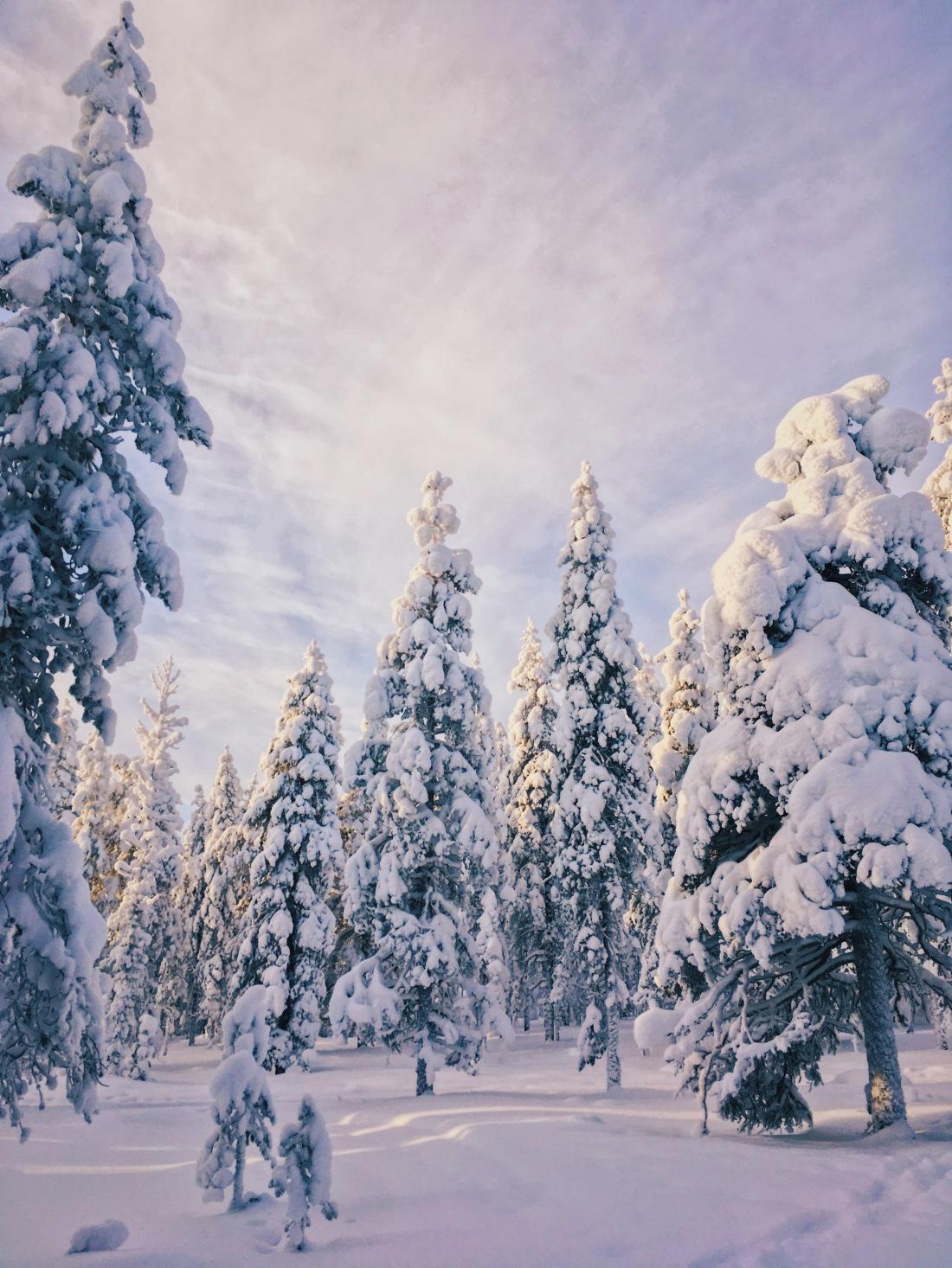 Zima w Finlandii. Podróże na Koło Podbiegunowe.
